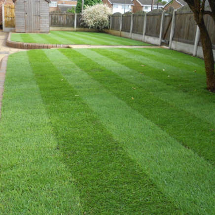 Ruby Turf | Turf Suppliers | Lancaster | Warrington | Stockport